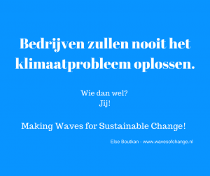 bedrijven lossen klimaatprobleem niet op